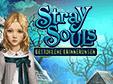 Jetzt das Wimmelbild-Spiel Stray Souls: Gestohlene Erinnerungen kostenlos herunterladen und spielen