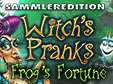 hidden-object-Spiel: Witch's Pranks: Frog's Fortune Sammleredition