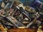 Wimmelbild-Spiel: Questerium: Dunkle Verschwörung Sammleredition