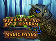Logik-Spiel: Riddles of the Owls' Kingdom: Magic WingsRiddles of the Owls' Kingdom: Magic Wings