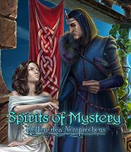 Wimmelbild-Spiel: Spirits of Mystery: Ketten des Versprechens